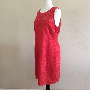 J. Crew lace dress NWT size 12 color coral